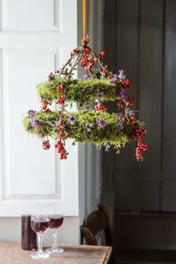Moss and berry hanging Photo by Jason Ingram