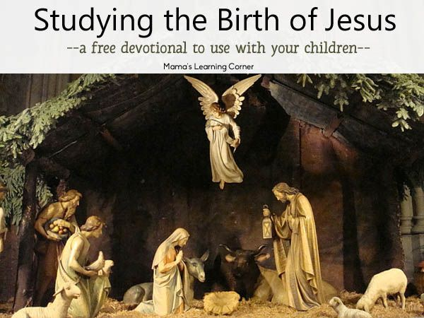"""Download this free 15-day Study on the Birth of Jesus - includes a passage of Scripture with questions to spark discussion. """"Whatever you do, take the time to linger over God's Word this Christmas Season. Refuse to be rushed."""""""