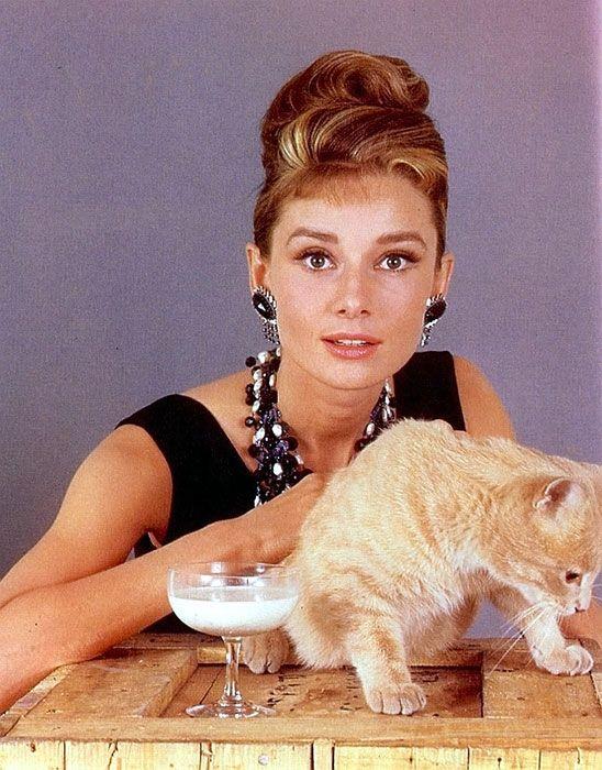 Audrey Hepburn con il gatto Orangey interprete del ruolo di Gatto in Colazione da Tiffany