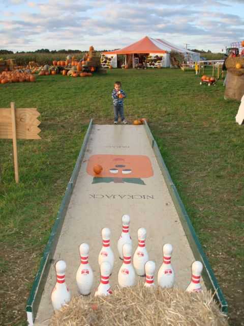 pumpkin bowling - Google Search