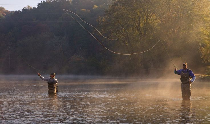 80 best images about fishing in north georgia on pinterest for Lake blue ridge fishing
