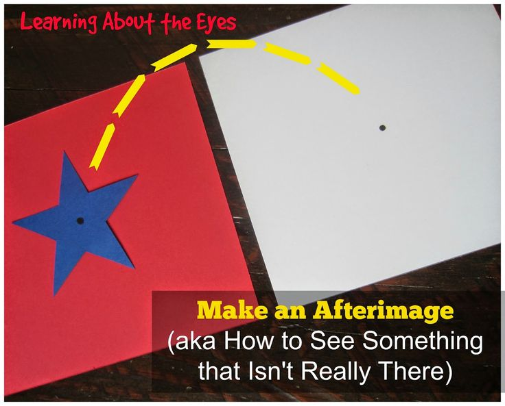 Science of seeing:  Learning about the Eyes with Afterimages.
