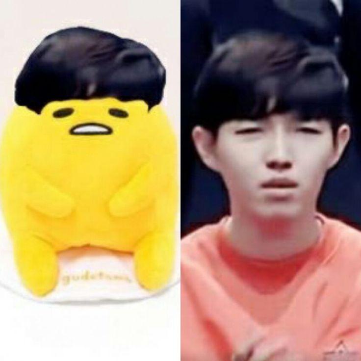 jaehwan and that gudetama is always looks similar.. hahahahaha cutie