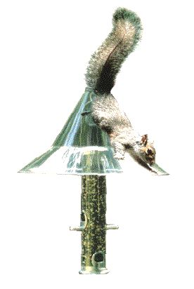 "AR154 Mandarin Baffle. Keeps rain out of feeders. Easy to hang. hardware included. 17"" clear dome. Shelters feeder from rain, snow. Lifetime warranty. 100% recycled plexiglass construction."