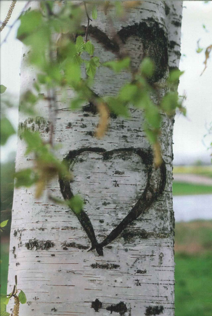 In <3 with nature