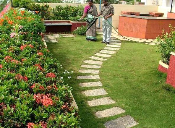 Roof Garden At Ganga Street Besant Nagar Photo M Karunakaran In 2020 Roof Garden Design Rooftop Garden Roof Garden