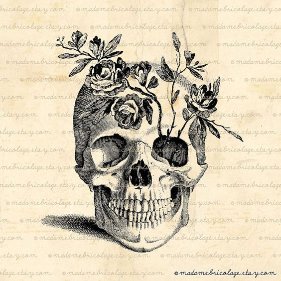 Pretty. Would love a skull tattoo sometime, a good reminder of our mortality