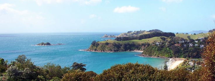 Around Waiheke Tours offer the best value half day wine tour on Waiheke. Book online today!