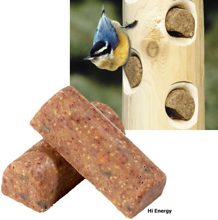 1000 images about suet on pinterest bird seed ornaments for How to make suet balls for bird feeders