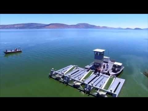 CERULE | Récolte de l'algue AFA sur le lac Klamath - Eté 2016