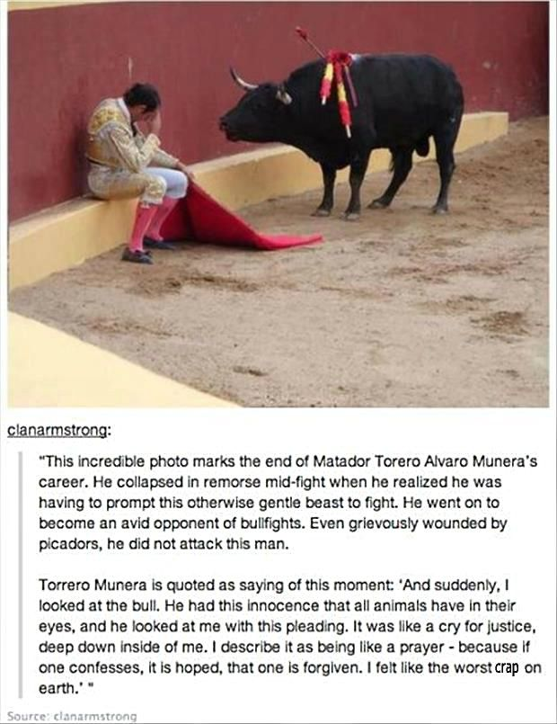 This isn't true - please use the link and read the real story - this isn't Alvaro Munera [who did become an animal rights advocate] and this isn't the moment he decided to do so -----  http://www.snopes.com/photos/people/munera.asp    ------------