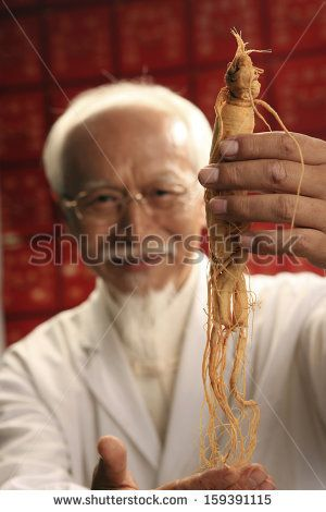 Male doctor holding ginseng
