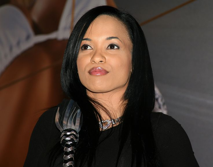 Report: Karrine Steffans Admits to Lying About Darius McCrary Abuse