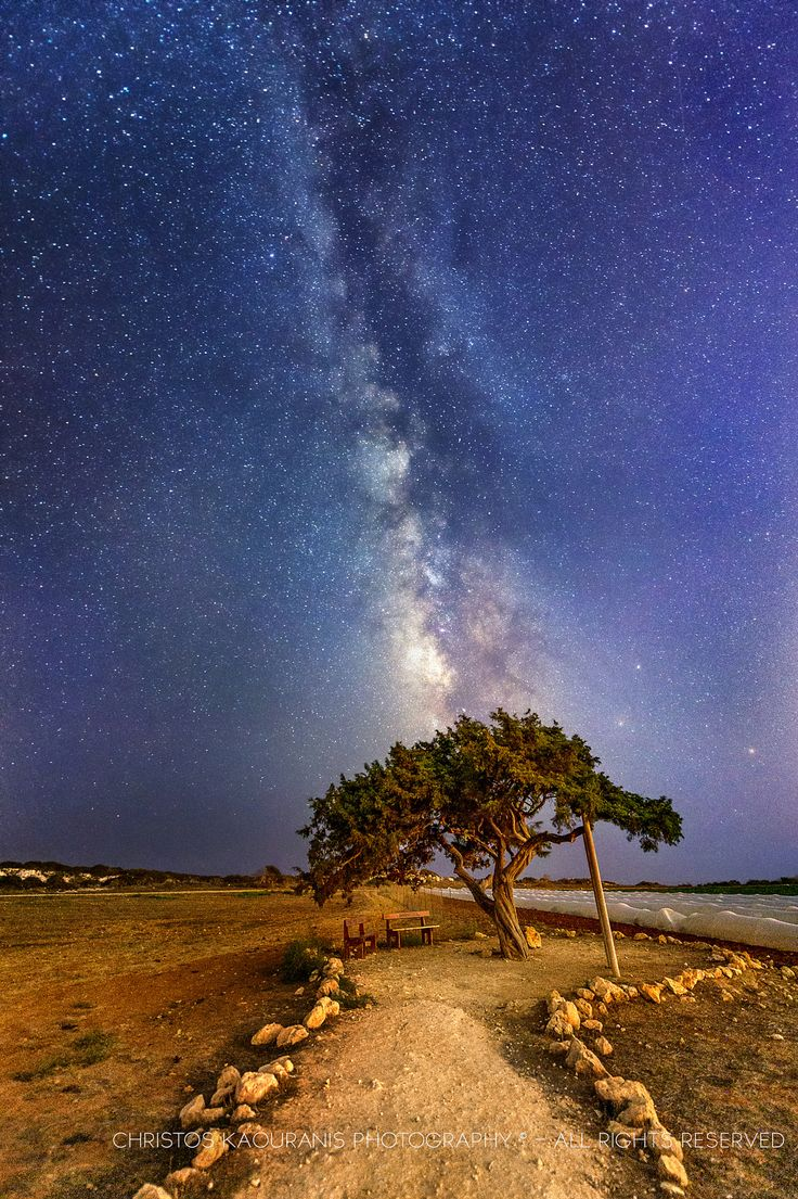 ~~Milky way on top of the love tree at Cape Greco | The milkyway on top of the love tree at Cape Greco in Cyprus. This tree is a famous spot for wedding location photo-shoots, where the couple gets photographed. | by Christos Kaouranis~~