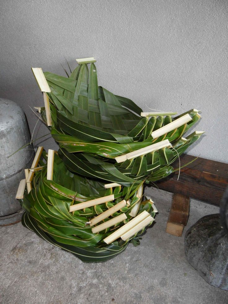 How To Weave A Coconut Leaf Basket : Best weaving images on breien closure