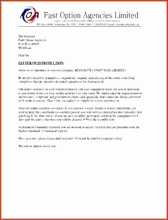 P Amp L Statement Template In 2020 Business Letter Example