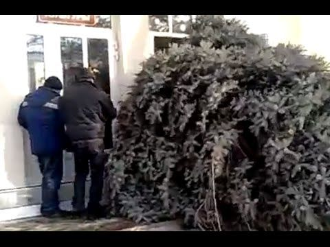 O Christmas Tree... Fail! [Funny Compilation]