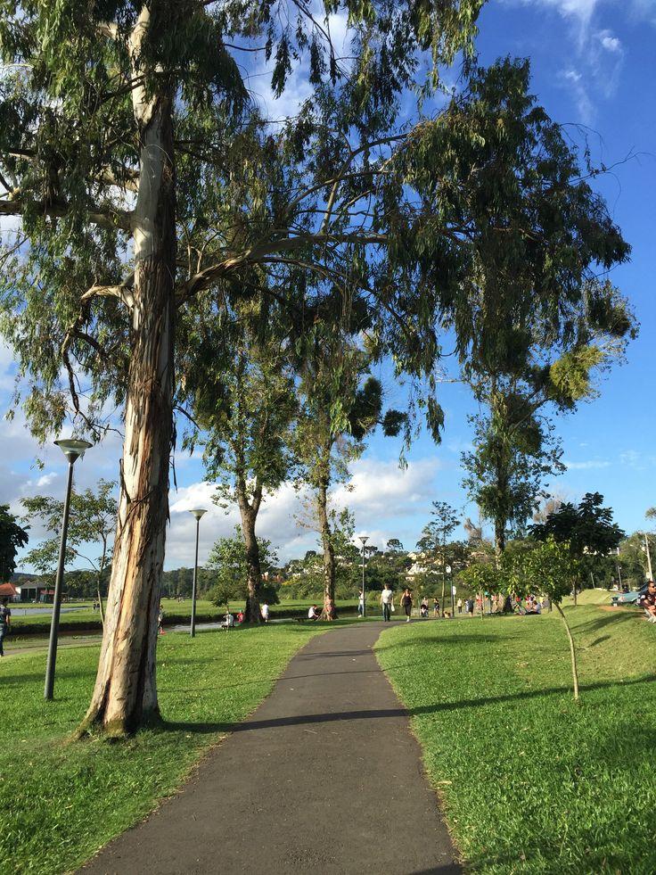 Os parques mais incríveis de Curitiba - Brasil