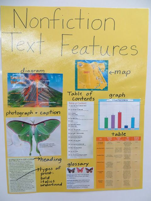 iTeach 1:1: Nonfiction Text Features (Freebie)