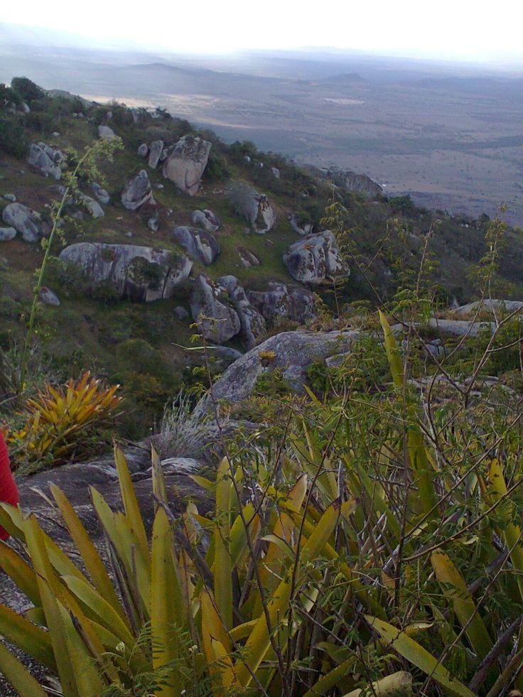 A Caatinga Serra Negra, Bezerros - PE