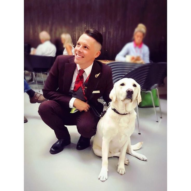 From @aciegracie When your Friday at work involves training guide dog puppies how to act on a plane  #puppy #guidedog #goldenretriever #dog #happy #uniform #virginatlantic #viviennewestwood #best #day #work #werk #gay #gayuk #gayboy #like4like #follow4follow #igers #picoftheday #fun #smile #instacrewiser #crewlife #crewiser #stewardess #aircrew #airplane #aircraft #flightattendants #steward