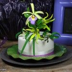 Torta con Orchidea Vaniglia e Ylang Ylang
