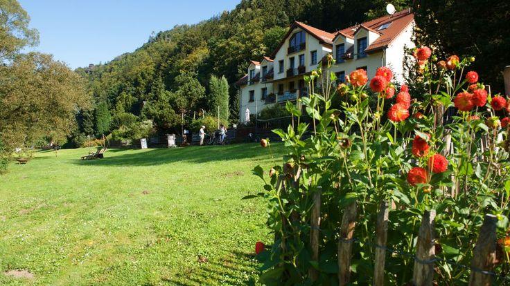 Bio- und Nationalparkhotel Helvetia **** Viel Licht, viel Luft, reichlich Holz und helle Farben, ein schöner Garten, dazu entspannende Musik u...