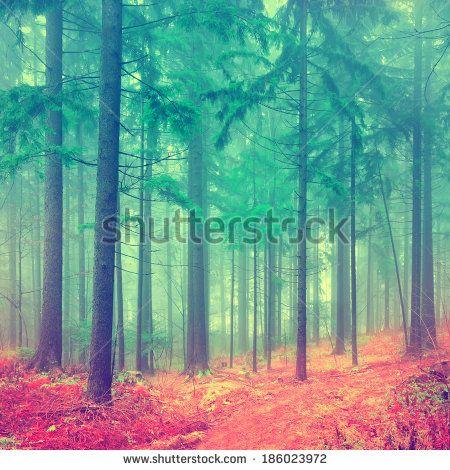 Fantasy Landscape Stock Photography | Shutterstock