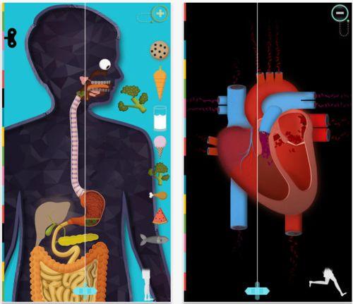 app per iPad è pensata per i bambini dai 4 anni in su per scoprire come è fatto il corpo umano.