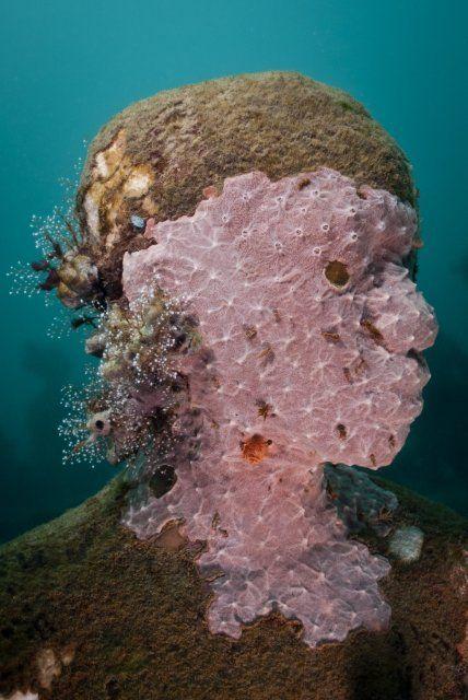 Viccisitudes - Underwater Sculpture by Jason deCaires Taylor