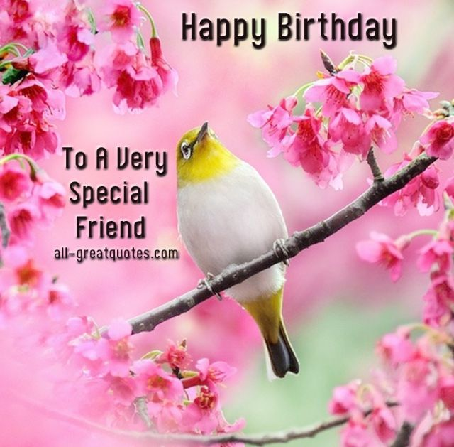 Best 25+ Free birthday wishes ideas on Pinterest | Free birthday ...
