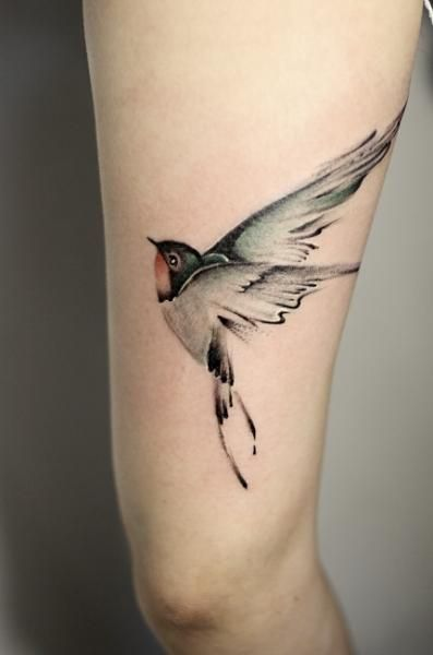 Bein Realistische Vogel Tattoo von GZ Tattoo Realistic bird (hummingbird) beautiful