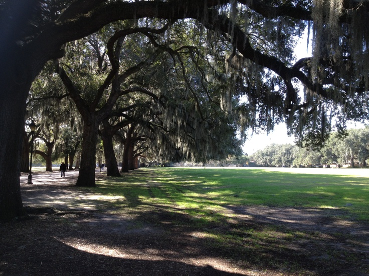 Architecture Of The Natural Environment Forsyth Park In Downtown Savannah Ga Scenic Outdoors
