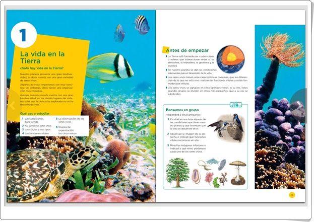 Recursos Educativos De Secundaria Unidad 6 De Biología Y Geología De 1º De E S O La Vida En La Tierra Los Sere Biología Ciencias De La Naturaleza Geología