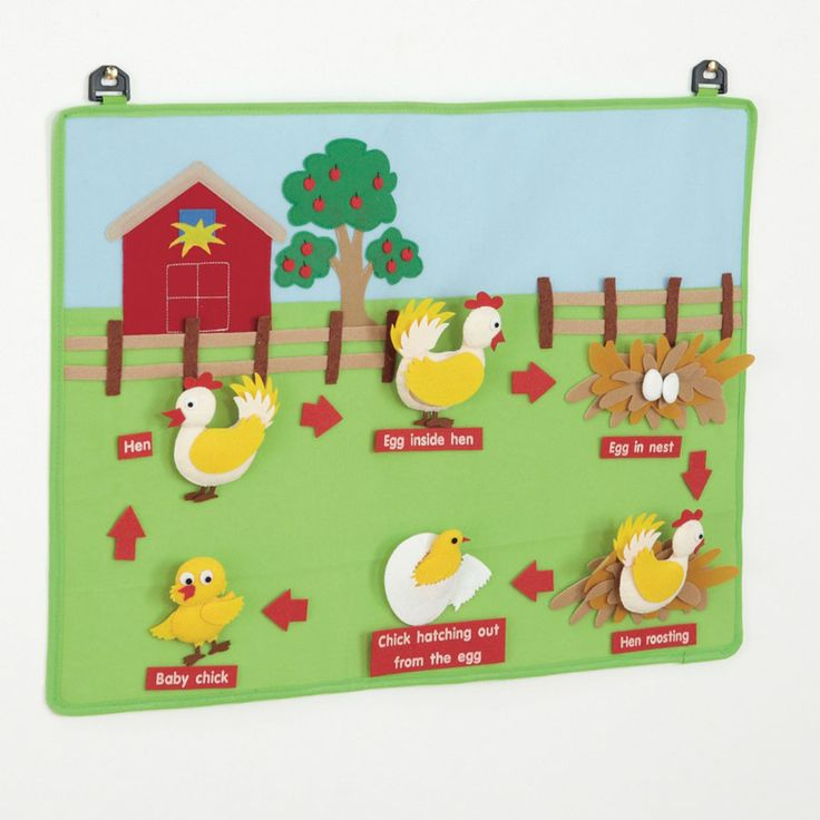 These bright and colourful wall hangings can form part of a lovely classroom wall display as well as teaching children all about the life cycles of frogs, plants, butterflies and chickens. Each of the fabric wall displays features felt pieces and labels to represent the different life cycles.