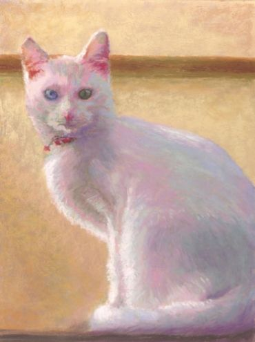 White Cat Pastel Painting by Poucher, painting by artist Nancy Poucher
