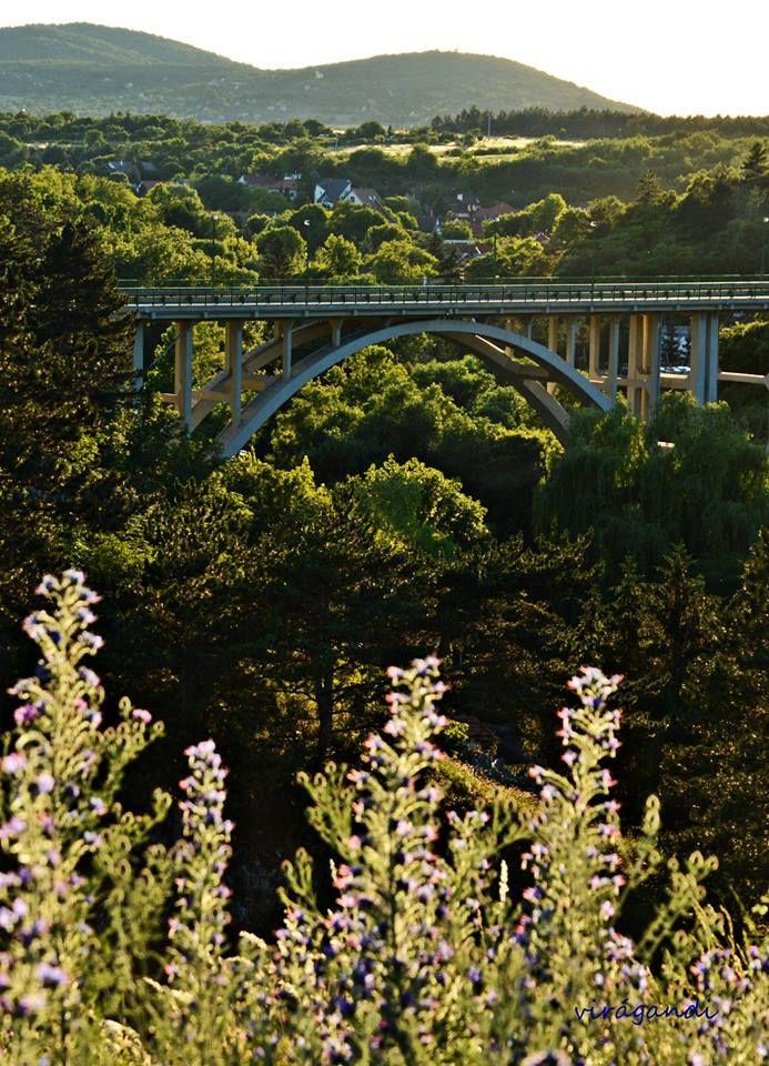 Andrea VirágFotók Veszprém Viadukt - Hungary