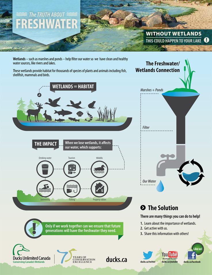 literature review on wetlands and climate ¹ biodiversity and climate change literature review (revue de littérature en lien   improve techniques for restoration of wetlands, rivers, and areas outside of  the.