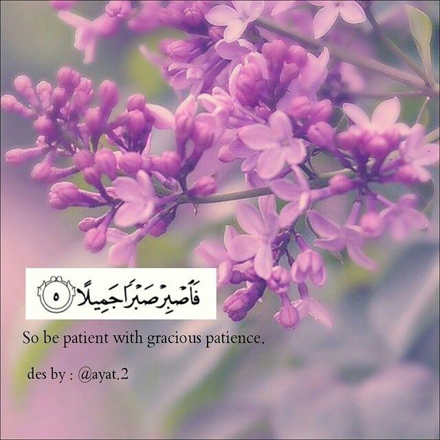 وصف الصبر وهو من اصعب الامور وامرها بالجمال وهذا الوصف من الله من مالك الملك الحمد لله اللهم ارزقنا الرضى والصبر يا الله