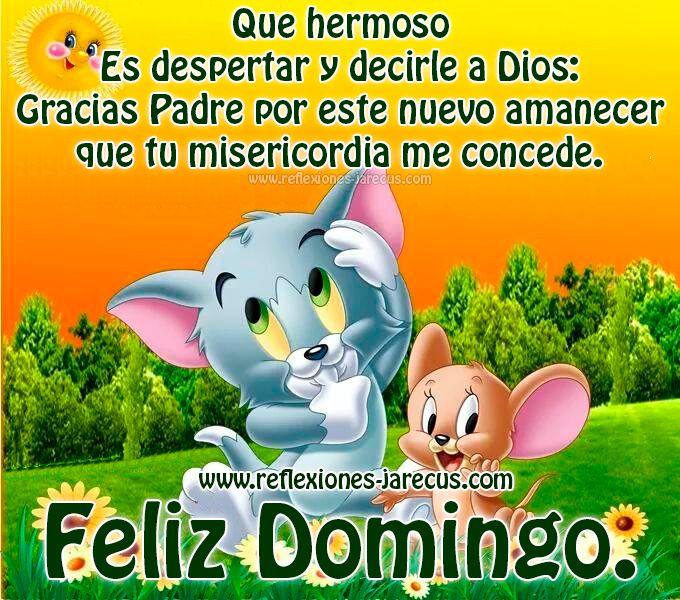 Feliz domingo, Gracias Padre por este nuevo amanecer