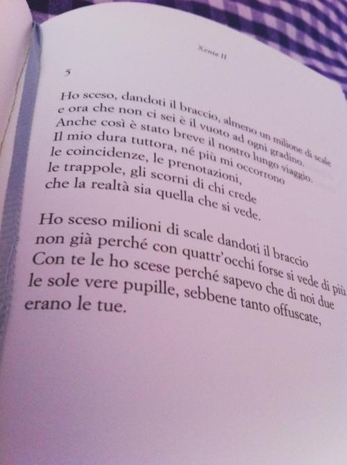 Eugenio Montale, Xenia, II, 5  (Ho sceso dandoti il braccio...)