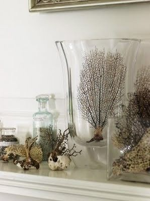 Dried marine vegetation, coral structures and general souvenirs from the sea make for beautiful and interesting additions to Hamptons style decor but be ruthless with new additions. If you stumble across a piece that trumps one you already have replace it. Hamptons style by nature is eclectic but 'less is more' is almost always applicable.