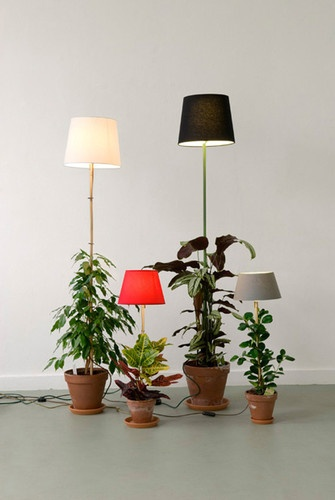 Oh, I can totally hack this! A plant-lamp