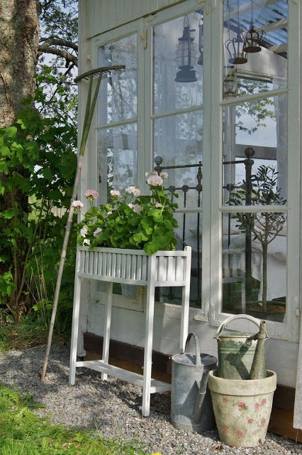 Glass house and Mårbacka pelargonium: Gardens Ideas, Guest Cottages, Shabby Chic Gardens, Gardens Houses, Flowers Boxes, Conservatoires Greenhouses, Garden Houses, Recycled Gardens, Glasses Houses