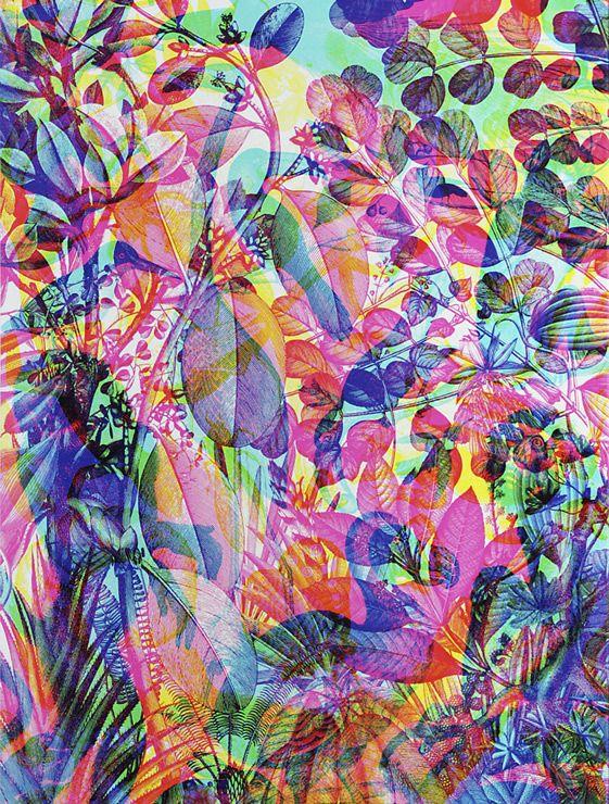 [ RGB Black Series ] Carnovsky  #illustrationJaguarsho Collection, Carnovsky La, Pattern, Colors, Art, La Selva, Prints, Design, Colours