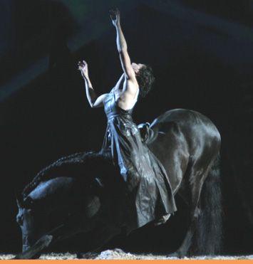 Manolo (Cheval-Passion 2007 à Avignon)