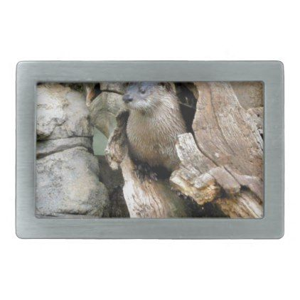 Harry Otter Rectangular Belt Buckle - photography gifts diy custom unique special