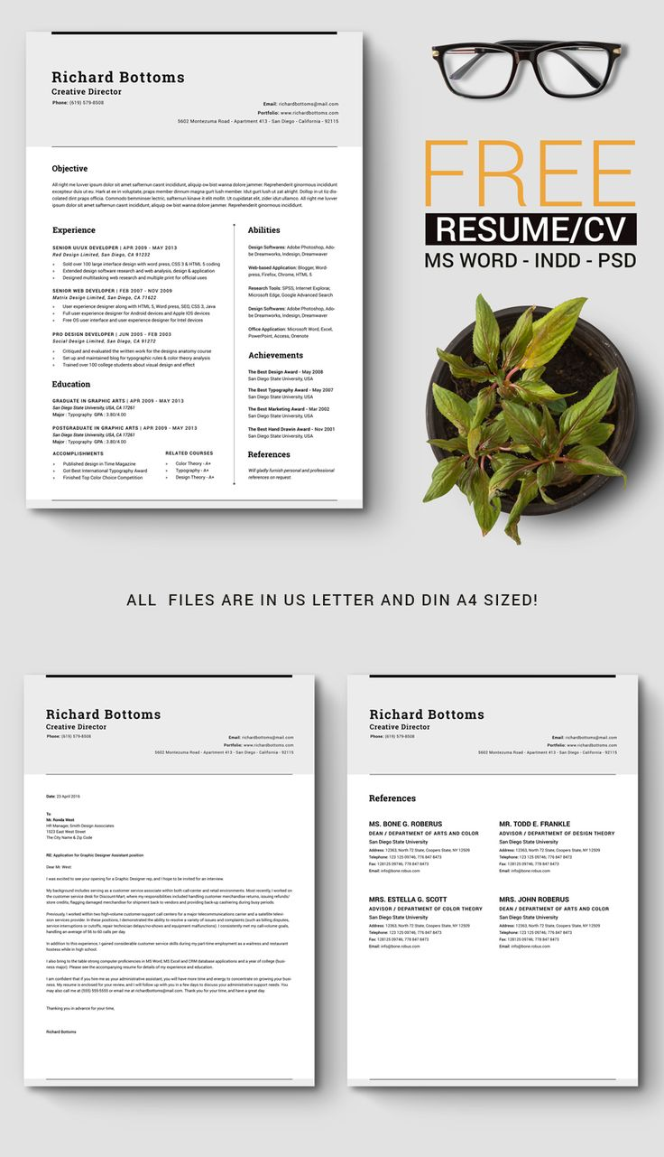 free timeless resume template