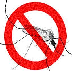 Natural Ways To Get Rid Of Dengue Fever