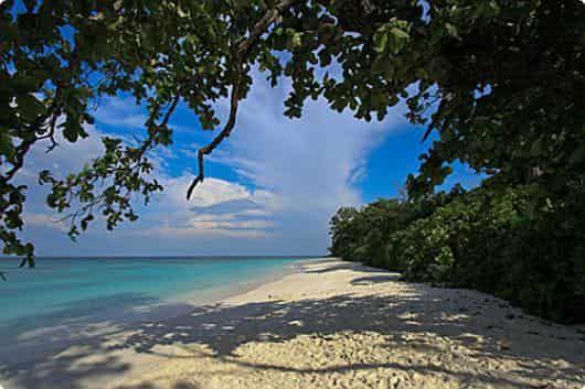 Остров Тачай (Virgin) — райский уединенный остров, входящий в состав национального парка Симиланских островов, по настоящему напоминает «Баунти»